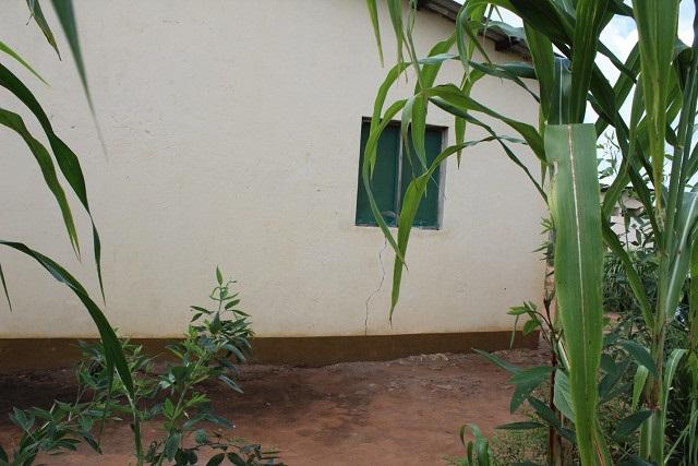 土地を失い自宅の脇で作物を作るだけの状況(モザンビーク開発)